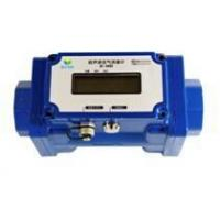 Buy cheap Gas Flowmeter Products: Ultrasonic Biogas Flowmeter BF-3000 from wholesalers