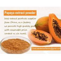 Buy cheap Herb Extract Powder Papaya extract from wholesalers
