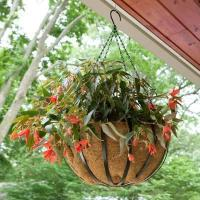 Buy cheap Round Hanging Basket Set with Coco Liner from wholesalers