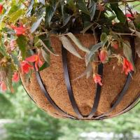 Buy cheap Hanging Garden Planter from wholesalers