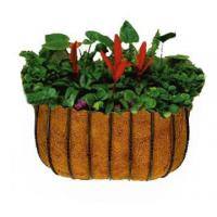 Buy cheap Outdoor Wall Basket with Coir Liner from wholesalers