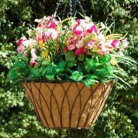 Buy cheap Hanging Basket With Coco Mat from wholesalers
