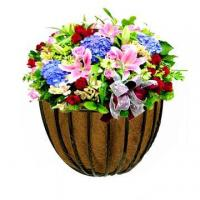 Buy cheap Garden Basket With Coco Liner from wholesalers