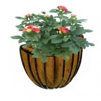 Buy cheap Wall Plant Basket with Coconut Liner from wholesalers