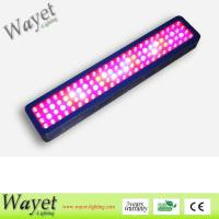 Buy cheap LED Grow Light 300w LED Grow Light from wholesalers