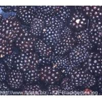 Buy cheap IQF Frozen Berries IQF blackberries from wholesalers