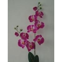 Buy cheap silk artificial orchid wedding favors orchids faux flowers Orchid(14 head,6 fruit) from wholesalers