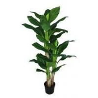 Buy cheap Banana & big leaf artificial banana tree, big leaf of real touch from wholesalers