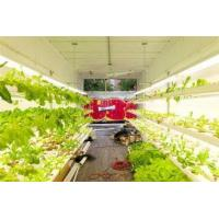 Buy cheap Hydroponic Farming Prefab Container Homes , Movable Modular Container Homes from wholesalers