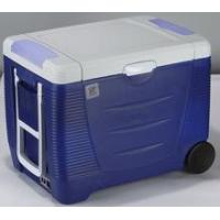 Buy cheap Outdoor cooler Car cooler and warmer box (portable fridge) 45L from wholesalers