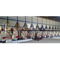 China Agriculture & Food Pellet Mill production line job description Production Line2 on sale