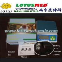 Buy cheap Electronic Kitchen Scale 7kg/7kg Kitchen Scale from wholesalers
