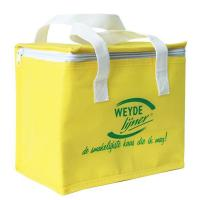 Lunch&Cooler Bag Promotional Custom Insulated Non-woven Cooler Bag
