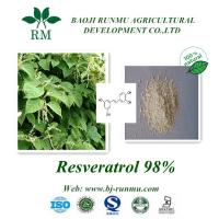 Buy cheap polygonum cuspidatum extract(Resveratrol 98%) product