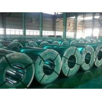 SteelCoils(HR/CR/Galvanized)