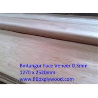 Buy cheap Rotary Cut Veneer Natural Wood face Veneer from wholesalers