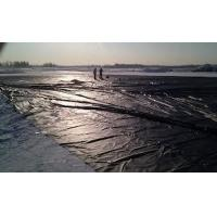 Buy cheap Geomembrane for landfill from wholesalers