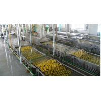 Buy cheap Canned Fruit Production Line product