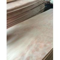 Buy cheap Linyi Okoume Veneer Factory from wholesalers