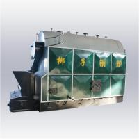 DZL SERIES STEAM BOILER