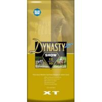 Buy cheap Dynasty XT Show 12/10 from wholesalers
