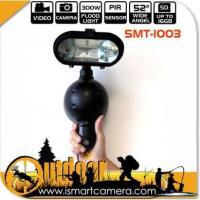Buy cheap 4 in 1 Video Recorder Still Photo+Flood Lamp+PIR Sensor Security Lighting Camera from wholesalers