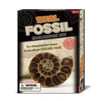 Buy cheap Deluxe Authentic Fossil Dig Kit product