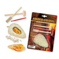Buy cheap Amber Fossil Dig Kit, 24pcs per inner from wholesalers