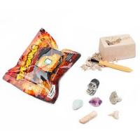 Buy cheap Treasure Of The Earth Dig Kit, 9 assorted product