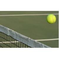 Buy cheap Sport net from wholesalers