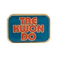 Buy cheap Accessories TKD Cloisonne Pins from wholesalers