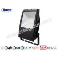 Buy cheap LED Flood light-Meanwell Series120W-03-TD from wholesalers