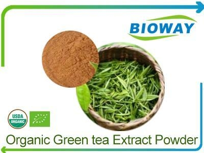 how to make tea extract powder