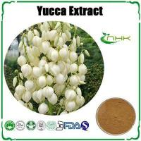 Buy cheap Yucca Extract, Sarsaponin, Yucca Powder, Yucca Schidigera Extract from wholesalers