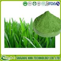 Buy cheap Organic Barley Grass Powder, Organic Young Barley Grass Juice Powder from wholesalers