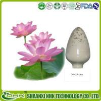 Herbal Supplements Lotus Leaf Extract