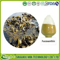 Buy cheap Fucoxanthin from wholesalers