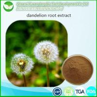 Buy cheap Dandelion Extract from wholesalers