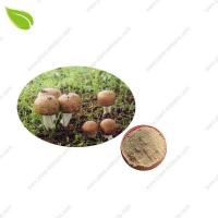 Buy cheap Agaricus Blazei Murill P >mushroom extract from wholesalers