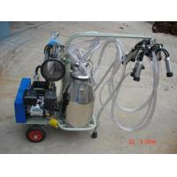 Buy cheap Cow milking machine price from wholesalers