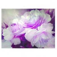 Buy cheap Realistic flowers white rose pure hand-painted oil painting from wholesalers