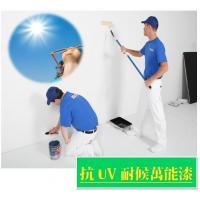 Buy cheap Anti-UV& Weather Resistance Multi-purposes Paint from wholesalers