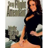Buy cheap Sexy Flight Attendant from wholesalers
