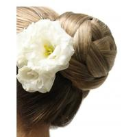 Buy cheap Cherish Bun Hairpiece by EasiHair from wholesalers