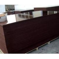 Buy cheap Brown film-faced plywood from wholesalers