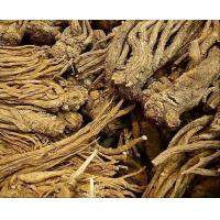 Buy cheap Angelica Extract/Dong Quai Extract from wholesalers