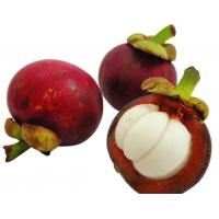 Buy cheap Mangosteen Extract/-mangostin from wholesalers