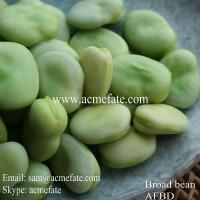 Buy cheap Frozen Broad Beans from wholesalers