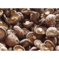 Buy cheap Dry Mushroom from wholesalers