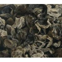 Buy cheap Black Fungus Agaric from wholesalers